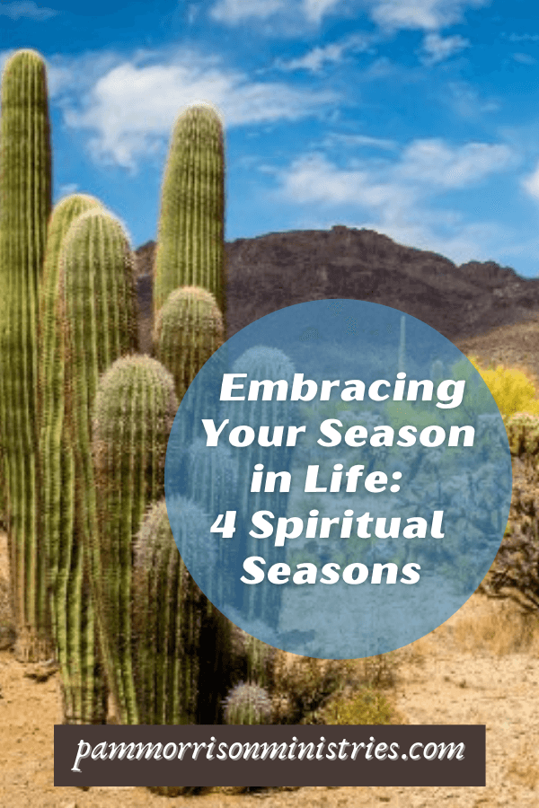 Spiritual Seasons of life